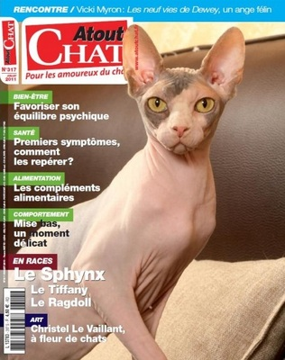 Le Sphynx, un chat tout nu (photos)