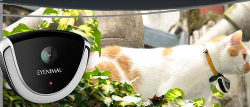 Eyenimal camera pour chat