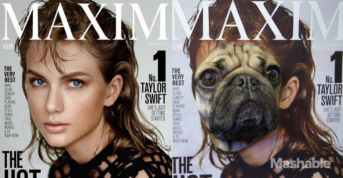 Les photos improbables du sosie canin de Taylor Swift
