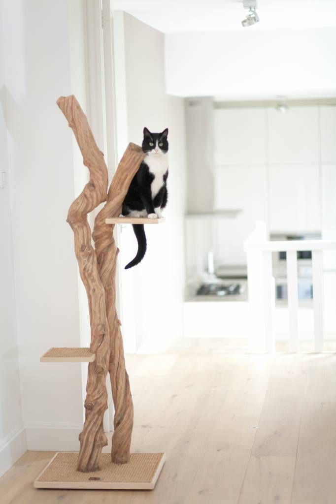 arbre à chat design