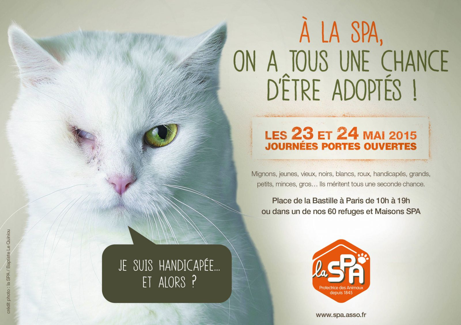 Ce week end les animaux des 60 refuges spa de france vous for Porte de champerret salon chiens chats