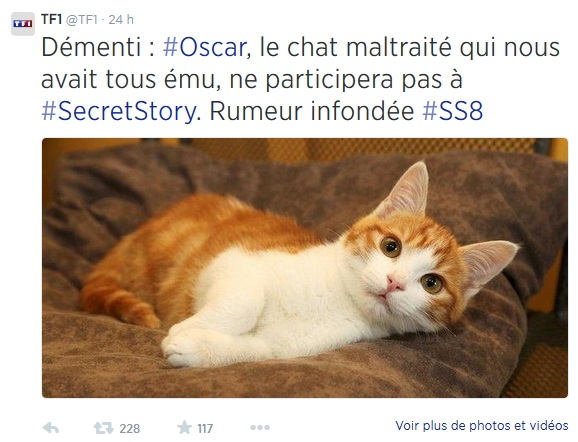 Non, le chat Oscar ne participera pas à Secret Story
